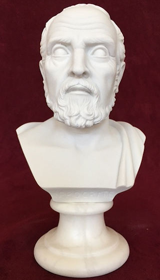 Bust of Hippocrates Father of Medicine Sculpture 6
