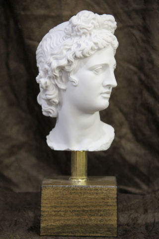 Head of Apollo Belvedere on Base Bust Statue 10