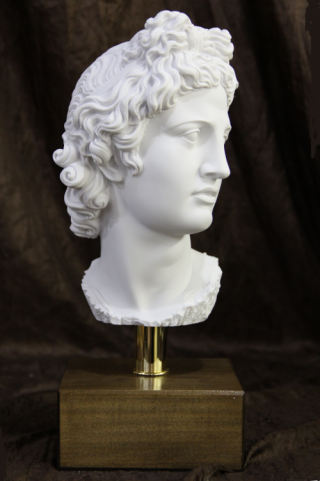 Apollo Belvedere on Base Bust Statue 15.5