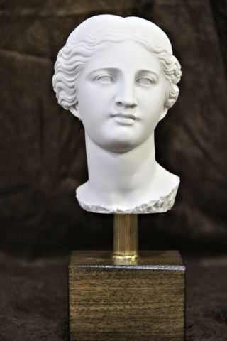 Head of Aphrodite Venus Bust 10