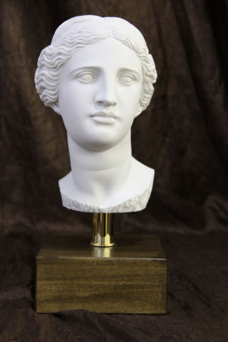 Head of Aphrodite Venus Bust on Base Statue