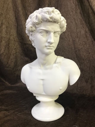 David Bust By Michelangelo Statue 14