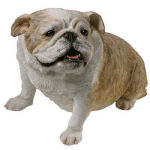 Bulldog Old Brindle Dog Figurine