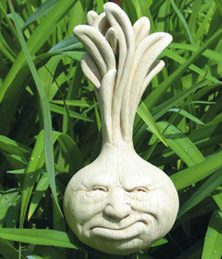 Ornery Onion Wall Plaque