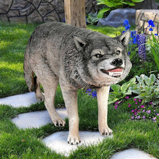 Growling Gray Wolf Statue Large Scale