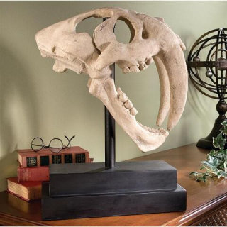 Saber-toothed Tiger Skull Dinosaur Sculpture Reproduction