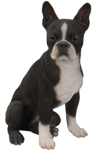 Boston Terrier Dog Garden Statue