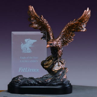 Glass Imprint Eagle Frame Sculptural