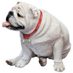Bulldog White Dog Life Size Sculpture