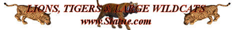 Lions-Statues-Tigers-Sculptures-Wildcats-Statuary.jpg