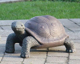 Tortoise Garden Sculpture Cement 21