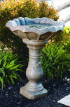 Scroll Bird Bath With Tulip Top 26.5