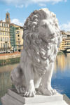 Lion Of Florence Sentinel Statue 28