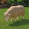 Merino Ewe Life-size Sheep Head Down Statue