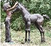 Girl And Her Foal Bronze Sculpture