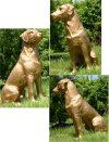 Bronze Labrador Dog Statue In Black Or Golden