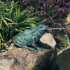Happy Frog Water Feature 16